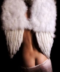 аватарка для контакта крылья ангела