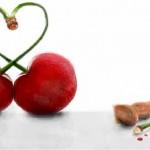 рисунок вишня любви