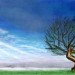 граффити вконтакте дерево и небо
