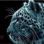 граффити на стену белый леопард