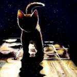 граффити в контакте котенок