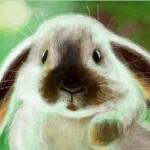 рисунок кролик