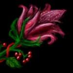 цветок рисунок на стенку вконтакте