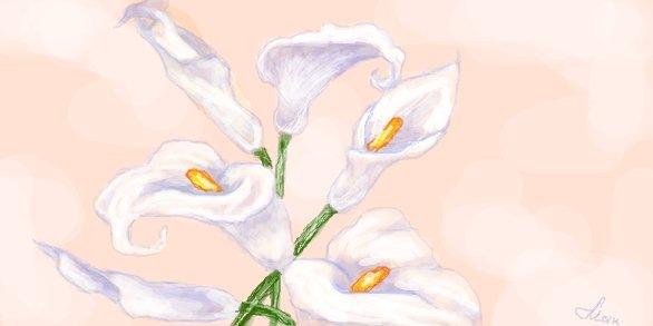 цветы рисунки фото:
