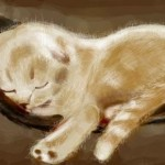 рисунок спящий котенок