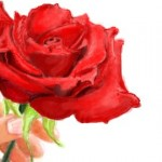 рисунки на стену в контакте дарю тебе розу
