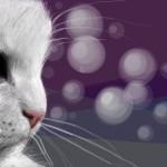 граффити рисунок белый котенок