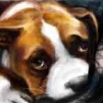 рисунки на стену в контакте собака