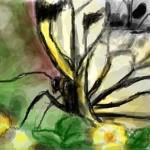 граффити в контакте бабочка