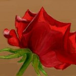 граффити в контакте красная роза