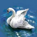 граффити в контакте белый лебедь