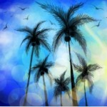 граффити на стену пальмы и солнце