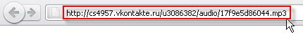 вставляем адрес ссылки в браузер