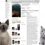 тема для контакта два котенка