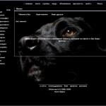 тема для контакта собака