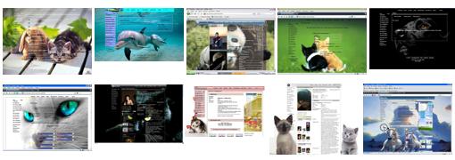 темы для контакта животные